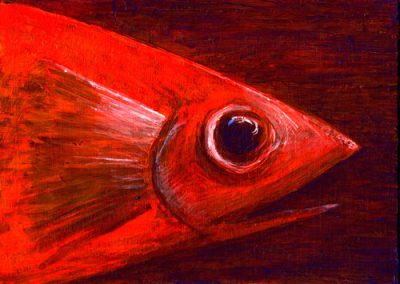 Fish Head... Red