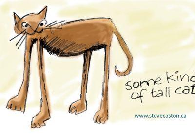 A long legged cat...